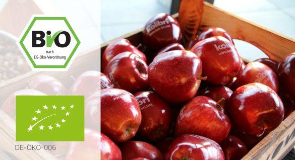 Bio-Siegel-Apfel